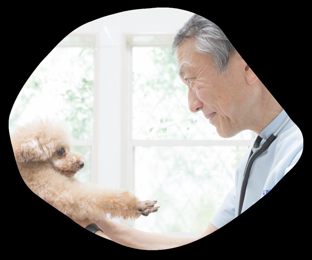 """動物たち・飼い主様に""""優しい診療""""をお届けします"""